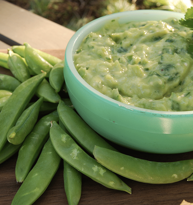 aguacate-tomatillo-salsa-3.png