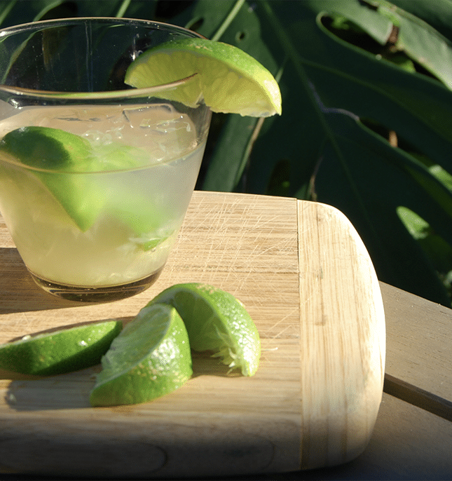 devita-margarita-recipe-2.png