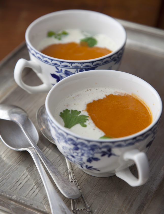 जिन और टमाटर का सूप [1]